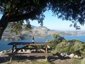 el-gastor-cottage-spanish-rentals-the-view-and-a-glass-of-wine-from-the-picnic-bench-671984